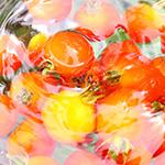商品撮影・物撮りサンプル 野菜