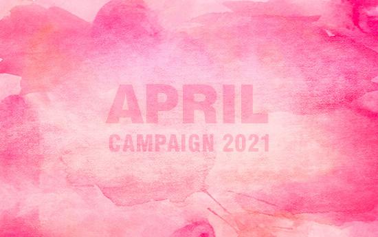 撮影半額・4月の撮影キャンペーン