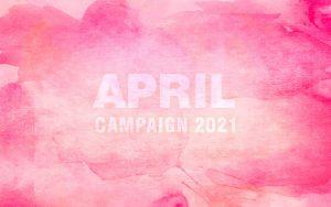 撮影半額・4月のキャンペーン