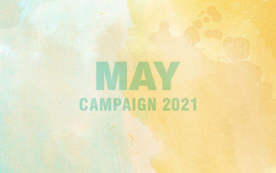 撮影プラン50%OFF・5月のキャンペーン